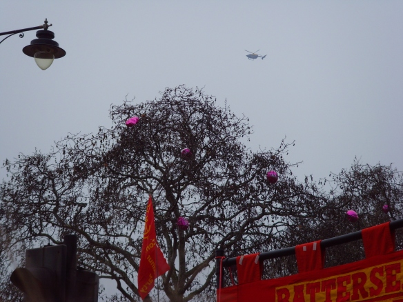 UCU balloons released into the trees